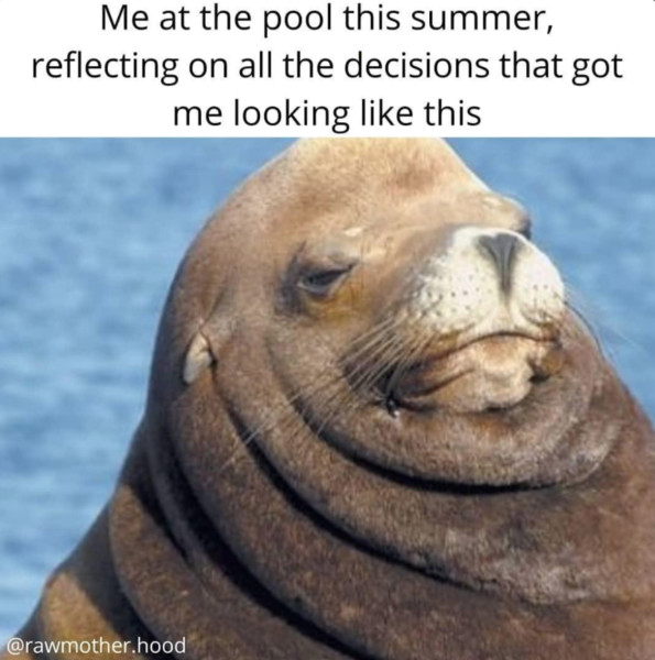 These Funny Memes Get What Summer 2020 Is Really Like For Parents Mabel Moxie